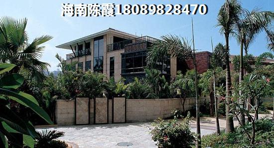 中南·林海间效果图