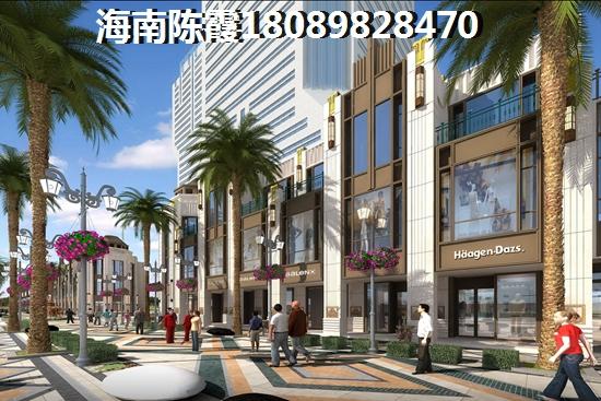 中国海南海花岛配套建设进度实景
