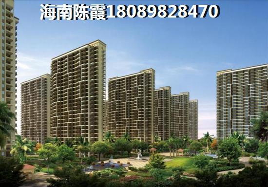 乐东购房政策